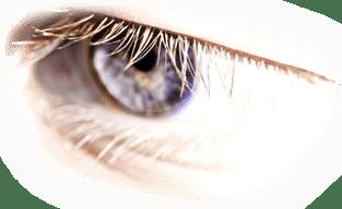Der richtige Augen-Blick ist wichtig - verpassen Sie ihn nicht!