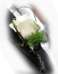Foto-Blume-Hochzeit-imBilde_at-by-Bernhard_plank