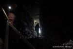DNG_IMG_9604Fledermaus-Ruine-Prandegg-by-Bernhard_Plank_imBilde-at-